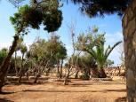Bonaccia - Residence del Sole Lampedusa